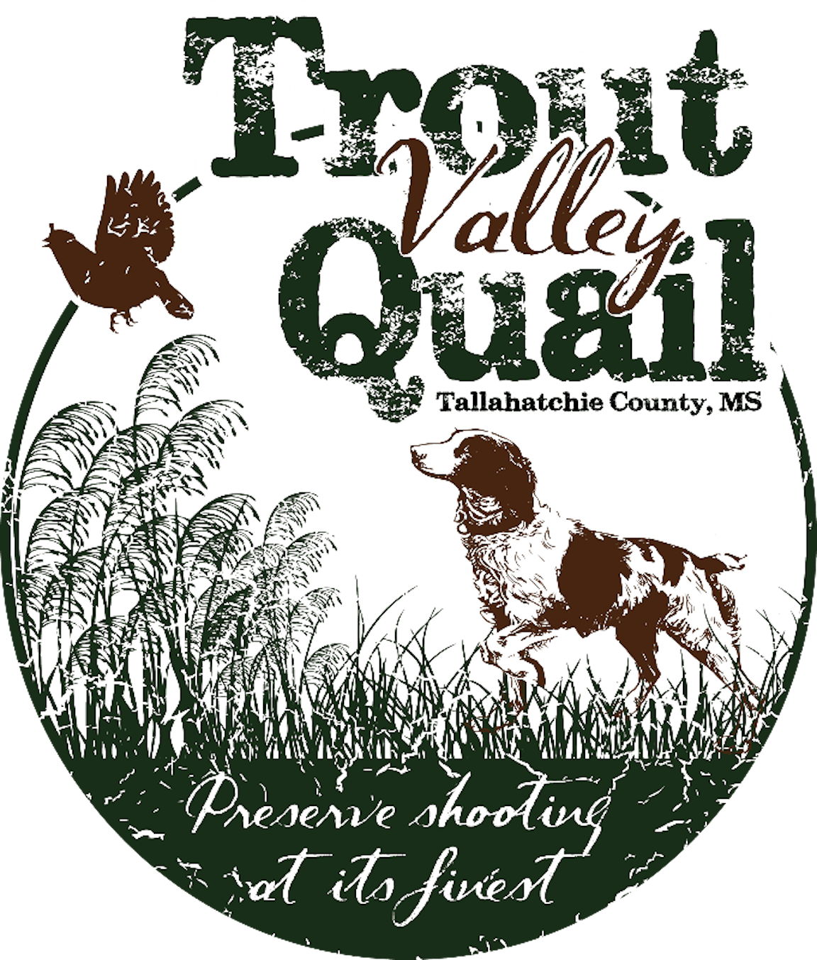 Trout Valley Quail